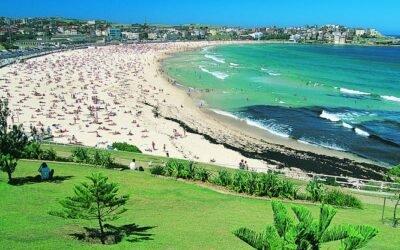 Australia's best seafood experiences