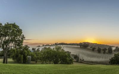 Australia's best wine regions
